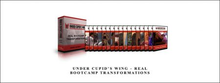 Real Bootcamp Transformations