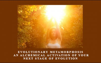 Evolutionary Metamorphosis: An Alchemical Activation of Your Next Stage of Evolution