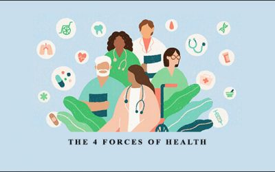 The 4 Forces of Health