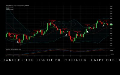 Automatic Candlestick Identifier Indicator Script for Tradingview